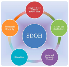 https://www.healthypeople.gov/2020/topics-objectives/topic/social-determinants-of-health